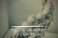 """Женский клуб """"Расстановочные упражнения """"Тема за темой""""."""